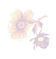 Branch with flowers roses isolated vintage grunge vector
