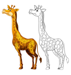 Doodles drafting animal for giraffe vector