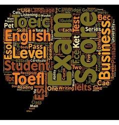 Esl exams a teacher s guide text background vector