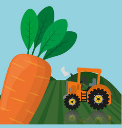 Farm fresh vegetables carrot product vector