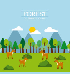 Forest and animals wildlife natural vector