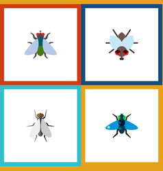 Icon flat fly set of fly buzz insect and other vector