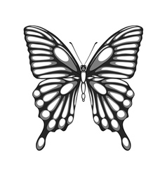 Black and white butterfly with watercolor effect vector
