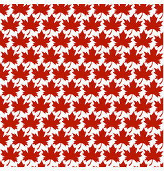 autumn maple leaf logo vector image vector image