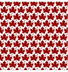 Autumn maple leaf logo vector