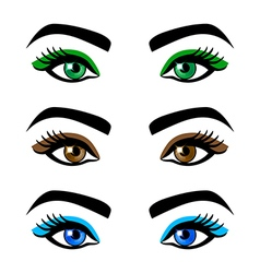 Collection female eyes and eyebrows of shapes vector image