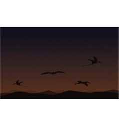 pterodactyl on sky landscape of silhouettes vector image