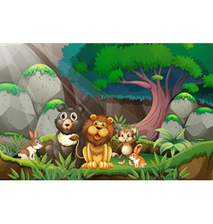 Animals in jungle vector