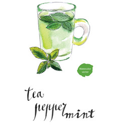 herbal tea cup with fresh peppermint vector image vector image