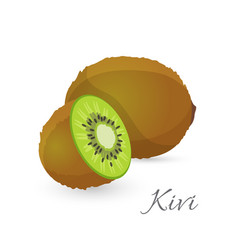 kiwi exotic fruit whole and half kiwifruit vector image vector image