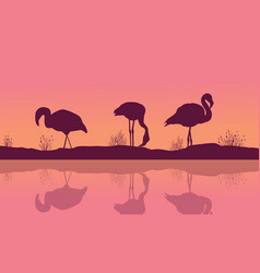 Riverbank landscape with flamingo silhouettes vector