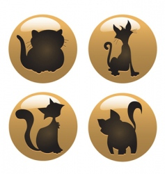 cat icons vector image