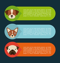Domestic animals vector