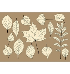 Autumn leaves silhouettes vector