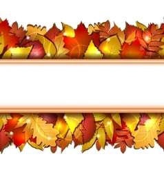 Seamless with autumn leaves vector