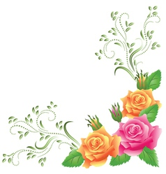 Pink and yellow roses vector