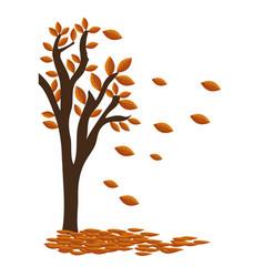autumn tree plant isolated icon vector image