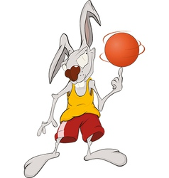 Rabbit the basketball player vector image