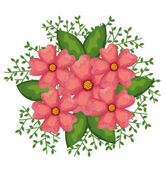 beautiful decoration floral icon vector image vector image