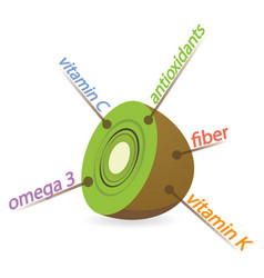 kiwi content properties and benefits vector image