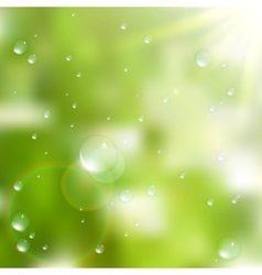 Water drops on green background plus eps10 vector