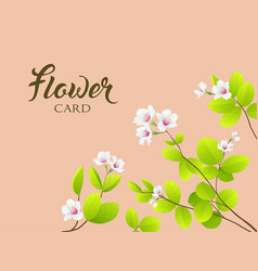White flower and leave greeting card vector