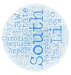Payroll south carolina unique aspects of south vector