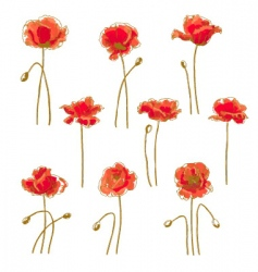 set of 9 poppy flower vector image vector image