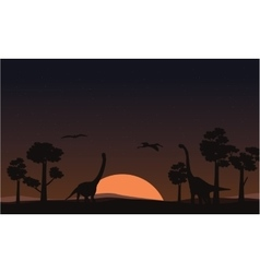 At sunset brachiosaurus landscape of silhouettes vector