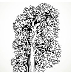 Graphically drawing black ink tree with luxuriant vector