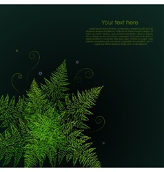 Green fern plant on a black background vector image vector image