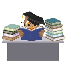 Owl in mortarboard reading book vector
