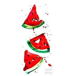 Slices of watermelon vector