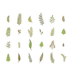 Set of spring leaves soft colors vector