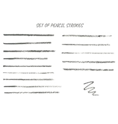 Collection of thin pencil strokes vector image