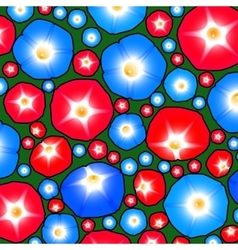 Pattern with ipomoea flowers vector image