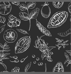 superfood seamless botanical pattern vector image vector image