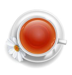 tea cup vector image