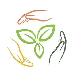 Hands around green leaves vector