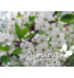 blurred spring background vector image vector image