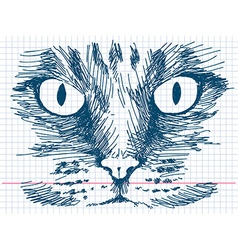 Hand drawn cat face vector