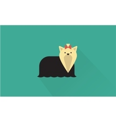 Yorkshire terrier icon vector