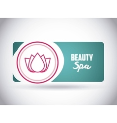 Beauty spa design vector