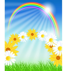 Flowers with green grass and rainbow vector image