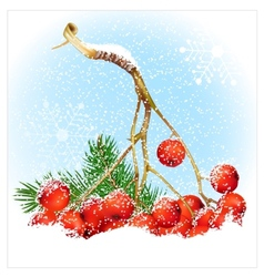 Christmas snow background with rowan vector image vector image