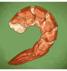Engraving shrimp retro vector