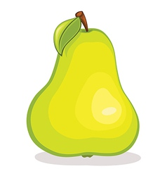Isolated pear fruit vector image