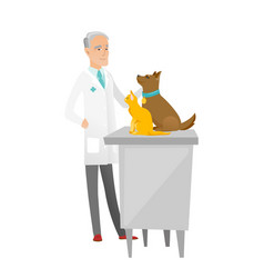 Senior caucasian veterinarian examining pets vector