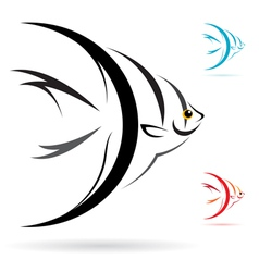 Angel fish vector