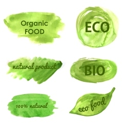 Ecological and nature banners Go green vector image vector image